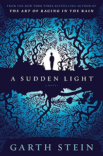 Sudden-Light_Stein